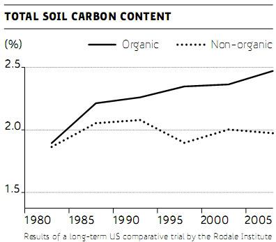 Organic and non-organic soil carbon