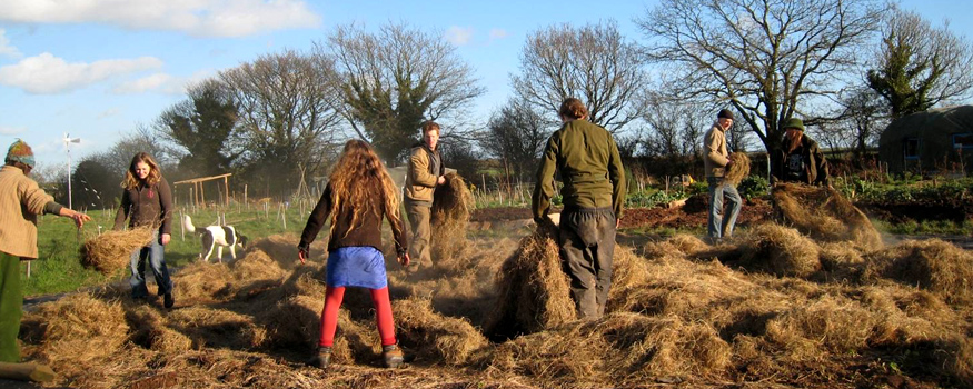 The Ecological Land Co-operative team, hard at work